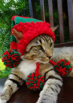 Cat Dog Christmas Hat - Elf Hat Stocking Cap for Cats and Small Dogs - Christmas Costume Pets