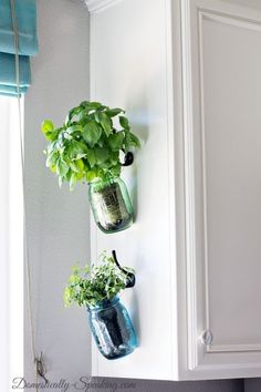 Hanging Fresh Herbs in Mason Jars - great way to bring the garden indoors and perfect in bllue and green vintage mason jars