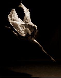 Marie Nouvelle Studio: Dance Photography