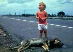 Herkes vicdanlı doğar   Sonradan çoğu insan kaybeder..  Vicdan insanın içindeki Tanrıdır !    Viktor Hugo
