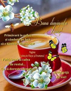 Drag, Floral, Coffee, Camel, Kaffee, Flowers, Cup Of Coffee, Flower