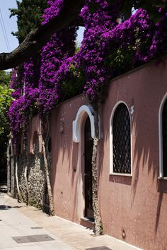 """""""The bougainvillea flowed down the architecture and mountainside like a beautiful floral fog."""" Photo (of Capri) and quote: Scot Schuman. #travel, #places, #photography"""