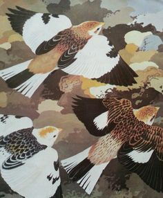 Snow Buntings by Ian Wallace Buntings, Wildlife Art, American Artists, Beautiful Images, Childrens Books, Rooster, Collage, Birds, Snow