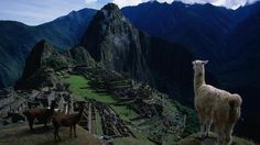 Peru, South America to see Machu Picchu with Hannes. And see how far I can get walking and camping because there is no way I'm riding a bus!