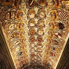 Por q não se fazem mais tetos como antigamente?!  #bologna #archiginnasiodibologna #gold #luxo #beleza #minhavidaitaliana #sangueitalianonaveia