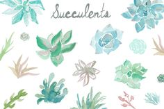 Watercolor Succulent Clip Art by Angie Makes on Creative Market