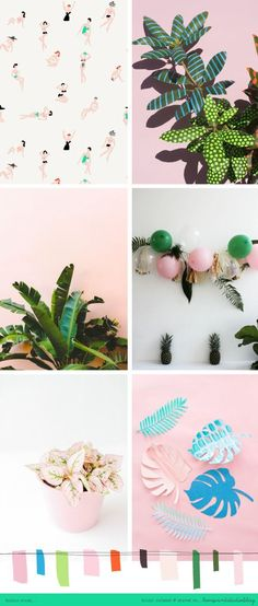 All the pretty plants!