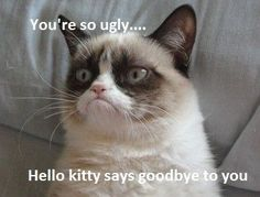 You're so ugly, Hello Kitty says goodbye to you.