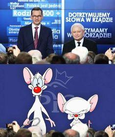 Polish Memes, Good People, Einstein, Geek Stuff, Jokes, Lol, Cartoon, Funny, Twins
