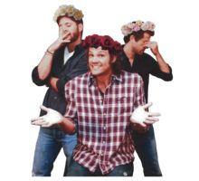 Supernatural flower crown