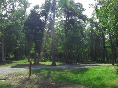 Cheaha State Park S5 Campground # 1