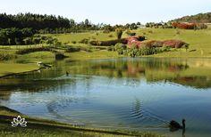 São quatro milhões de metros quadrados e centenas de espécies de plantas que fazem o jardim privado do Lake Villas ser o maior do Brasil. Marque sua companhia e agende uma diária para contemplar com ela esse recanto de beleza e exuberância.