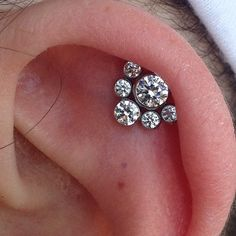 Helix piercing with this Anatometal super cluster. #anatometal #helixpiercing