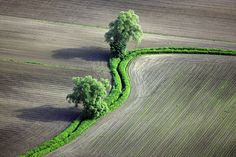 Green bands Aerial Photography
