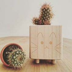Super cute wooden kitty planter, handmade by @mrvincentvega (kairi_power on Instagram)