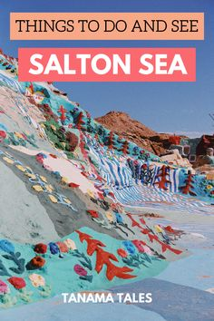 Things to do and see in the Salton Sea, Imperial County, #California | Salton Sea Photography | Things to do near Palm Springs | Palm Springs Day Trip | Bombay Beach | East Jesus | Hot Springs | Salvation Mountain | Banana Museum | Dos Palmas Reserve | Slab City | Things to Do near the Coachella Valley | California Desert | Coachella Valley | Palm Springs Itinerary | Day Trips from Palm Desert | Day Trips from La Quinta | Palm Springs Style | Los Angeles Day Trip | Los Angeles Winter Getaway
