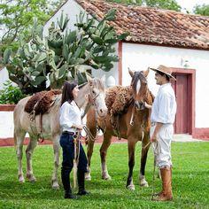 Uma cena típica de fazenda, na foto enviada por Diones Alves.
