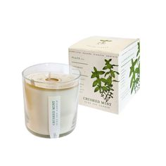 Light up your home with the sweet scents of spearmint and peppermint. This candle is two gifts in one: the candle itself and the packaging. The box itself is infused with seeds so that you can plant it...  Find the Seeds of Mint Candle, as seen in the #UrbanForager Collection at http://dotandbo.com/collections/urbanforager?utm_source=pinterest&utm_medium=organic&db_sku=KOB0001-mnt