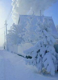 Just leave me here. All winter. Winter Szenen, I Love Winter, Winter Magic, Winter Christmas, Hello Winter, Beautiful Dream, Beautiful Places, Strange Weather, Especie Animal