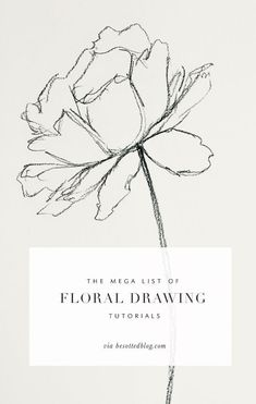 A mega list of floral drawing tutorials over 50+ resources for supplies, tutorials, books and classes!