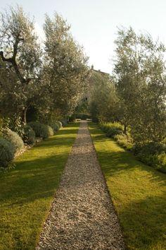 Alley...Castello di Vicarello- Maremma, Toscana