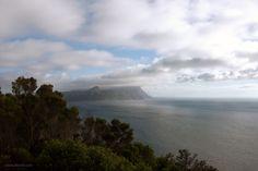 The fairest Cape Van Niekerk, Lush Garden, Nature Reserve, Cape Town, West Coast, South Africa, Clouds, Water, Outdoor
