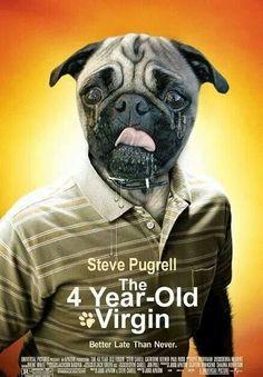 Steve Pugrell