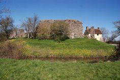Stogursey Castle - geograph.org.uk - 878178.jpg