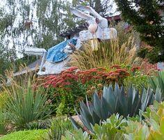 UC Master Gardener Program of Sonoma County - May in Sonoma County Low Water Plants, Garden Crafts, Plants, Plant Sale, Backyard Garden, Master Gardener, Ornamental Plants, Garden Tours, Backyard