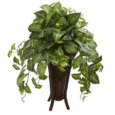 Nearly Natural - Nephthytis Artificial Plant in Stand Planter [ID To witness the dense foliage up close, place this artificial plant on a small table next to your readings nook low bookcase or behind your favorite chair. Small Artificial Plants, Artificial Plant Wall, Artificial Turf, Fake Plants, Artificial Flowers, Indoor Plants, Green Plants, Potted Plants, Silk Plants