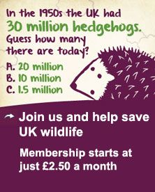 Organic September 2013. Join the Soil Association and become a wildlife warrior