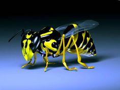 3D Bee Wallpaper wallpaperia.com