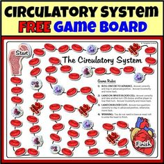 "Circulatory system task cards.  Using circulatory system task cards has never been so much fun. This circulatory system game board is great for converting any set of circulatory system task cards or set of questions into a fun review game.  The game board prints out in 4 different color options on an 8.5"" x 11"" piece of paper."