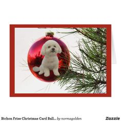 Bichon Frise Christmas Card Ball Hanging