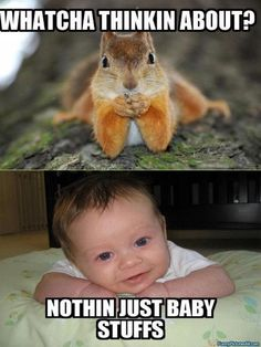 Funny Baby Pictures with Captions | ... Whatcha Thinkin About Nothing Just Baby Stuffs Funny Picture wallpaper