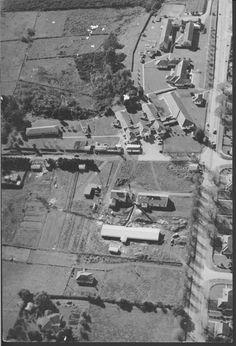 Tauranga Hospital 1954