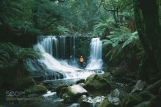 Where the wild things are... by JasonCharlesHill