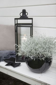 Det er stilig med sort sammen med grå planter som f. Plant Aesthetic, Balcony Garden, Terrace, Outdoor Projects, Yard Landscaping, Home Decor Styles, Container Gardening, House Plants, Interior And Exterior