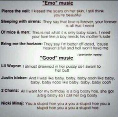 "This makes me mad more than anything. Like really it's not ""emo"" music or the ""devils music""! People need to understand that those bands save peoples live unlike lil Wayne or justin Bieber . ""Emo"" music is so much more better than what people consider good music."