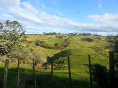 #miricordo #montagne verdi... come faceva la #canzone??