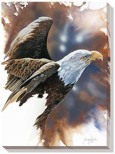 Bald Eagle Art | bald-eagle-wrapped-canvas-art-spirit-of-the-eagle-by-janene-grende ...
