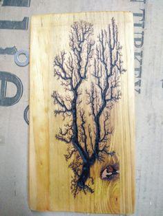 Fractal Wood Burning Tree on Pine