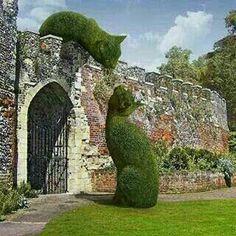 Topiary in Hertfordshire, UK; photo by Richard Saunders Topiary Garden, Garden Art, Topiaries, Cat Garden, Topiary Plants, Garden Types, Richard Saunders, Parks, Land Art