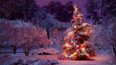 Christmas Tree HD Wallpapers 5