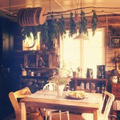 drying herbs above kitchen table