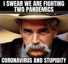 I swear we are fighting to pandemics: coronavirus and stupidity Stupid Funny, Funny Cute, Really Funny, Funny Stuff, Funny Relatable Memes, Funny Jokes, Hilarious, Drunk Humor, Cat Jokes