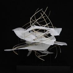 by envdesign process/diagrammatic model by 4th yr arch student KYAT CHIN [studio: frank clementi]