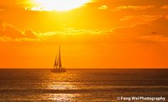 A sail boat returning home under the golden sunset, on the ocean near the tropical island of Oahu, Hawaii.    © All rights reserved. You may not use this photo in website, blog or any other media without my explicit permission.