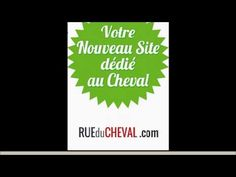 petites annonces équestre  www.rueducheval.com