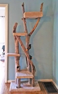 I love the use of drift wood in a cat condo. I would have chosen a blue hue for the carpet though.